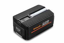 Batéria Riwall PRO RAB 240