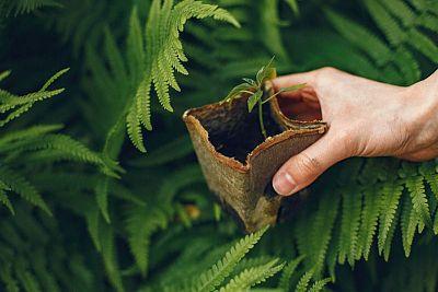 6 možností ako sa správať k životnému prostrediu zodpovednejšie