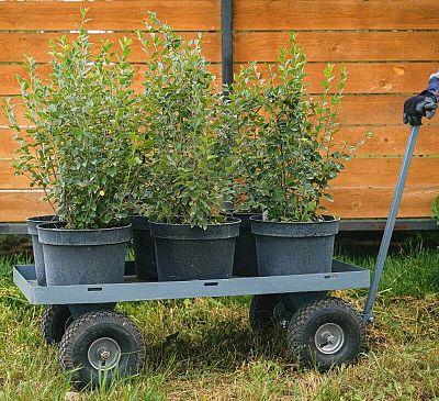 7 dôvodov, prečo si zaobstarať záhradný vozík či káričku