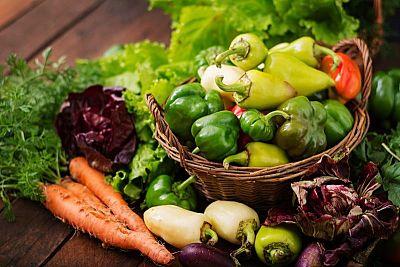 9 dôležitých živín v pôde pre zdravý rast rastlín a bohatú úrodu