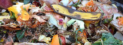 Ako triediť kuchynský bioodpad od 1.1.2021