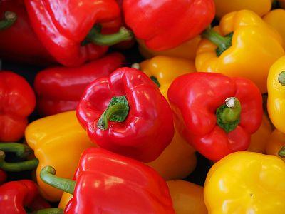 Pestujeme papriku - rady a tipy
